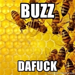 Honeybees - BUZZ DAFUCK