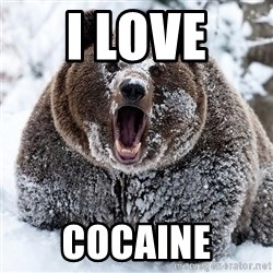 Clean Cocaine Bear - I LOVE  COCAINE