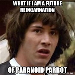 Conspiracy Keanu - What if i am a future reincarnation of paranoid parrot