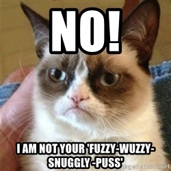 Grumpy Cat  - no! I am not your 'fuzzy-wuzzy-snuggly -puss'