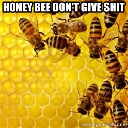 Honeybees - honey bee don't give shit