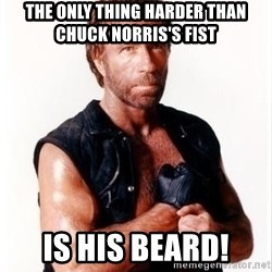 Chuck Norris Meme - The only thing harder than Chuck Norris's fist is his beard!