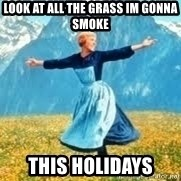 Look at all these - look at all the grass im gonna smoke  this holidays