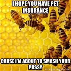 Honeybees - I HOPE YOU HAVE PET INSURANCE  CAUSE I'M ABOUT TO SMASH YOUR PUSSY
