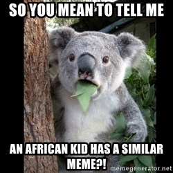 Koala can't believe it - so you mean to tell me an african kid has a similar meme?!