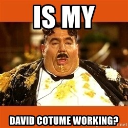 Fat Guy - Is my david cotume working?
