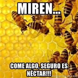 Honeybees - Miren... come algo, seguro es néctar!!!