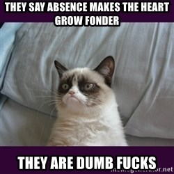 tard the grumpy cat 2 - They say absence makes the heart grow fonder they are dumb fucks