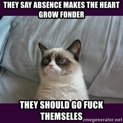 tard the grumpy cat 2 - They say absence makes the heart grow fonder they should go fuck themseles
