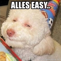 Troll dog - ALLES EASY..