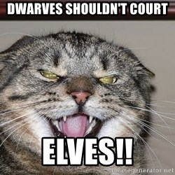 Angry Cat - dwarves shouldn't court  Elves!!