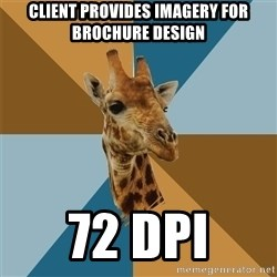 Graphic Design Giraffe - CLIENT provides IMAGEry FOR BROCHURE DESIGN 72 dpi