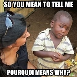Skeptical 3rd World Kid - so you mean to tell me pourquoi means why?