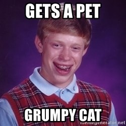 Bad Luck Brian - gets a pet grumpy cat
