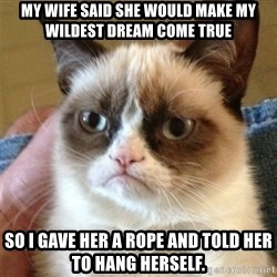 Grumpy Cat  - My wife said she would make my wildest dream come true So I gave her a rope and told her to hang herself.