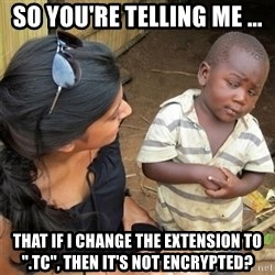 "So You're Telling me - So you're telling me ... That if i change the extension to "".TC"", then it's not encrypted?"