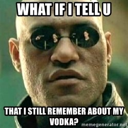 what if i told you matri - What if i tell u that I still remember about my vodka?