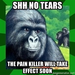 Gorilla Munch Gorilla - shh no tears THE PAIN KILLER WILL TAKE EFFECT SOON
