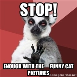 Chill Out Lemur - Stop! Enough with the      funny cat pictures