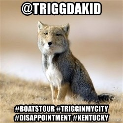Disappointed Tibetan Fox - @Triggdakid #BOATSTOUR #TriggInMyCity #Disappointment #kentucky