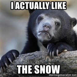 Confession Bear - I ACTUALLY LIKE THE SNOW