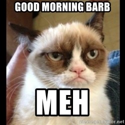 Frown Cat - GOOD MORNING BARB MEH