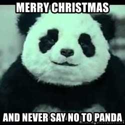 Never say no to Panda - merry christmas and never say no to panda
