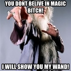 Bitchin Dumbledore - you dont belive in magic bitch! i will show you my wand!