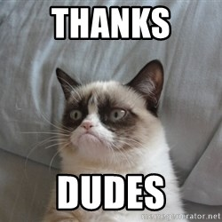 Grumpy cat 5 - thanks  dudes