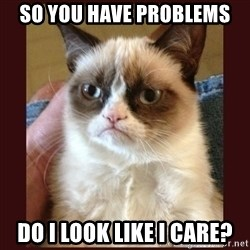Tard the Grumpy Cat - so you have problems do i look like i care?