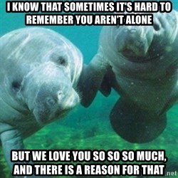 Manatee - I know that sometimes it's hard to remember you aren't alone But we love you so so so much, and there is a reason for that