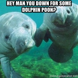 Manatee - hey man you down for some dolphin poon?