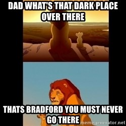 Lion King Shadowy Place - DaD what's that darK place over there Thats bradford you must never go thEre