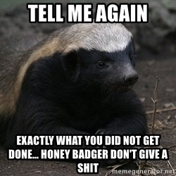 Honey Badger - Tell me Again Exactly what you did not get done... Honey Badger don't give a shit