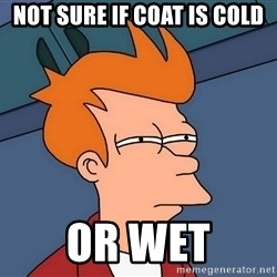 Futurama Fry - not sure if coat is cold or wet