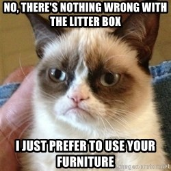 Grumpy Cat  - no, there's nothing wrong with the litter box i just prefer to use your furniture