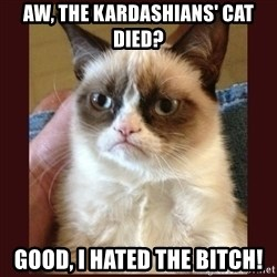 Tard the Grumpy Cat - aw, the kardashians' cat died? good, I hated the bitch!