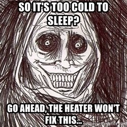 Uninvited Houseguest - So It's too Cold to sleep? Go ahead, the heater won't fix this...