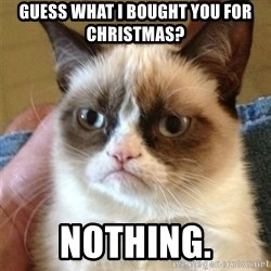 Grumpy Cat  - Guess what i bought you for Christmas? Nothing.