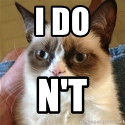 Grumpy Cat  - i do n't