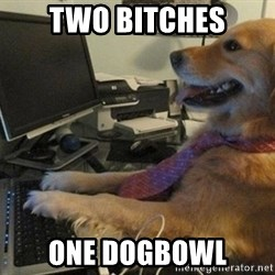 I have no idea what I'm doing - Dog with Tie - two bitches one dogbowl