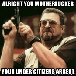 am i the only one around here - aLRIGHT YOU MOTHERFUCKER YOUR UNDER CITIZENS ARREST
