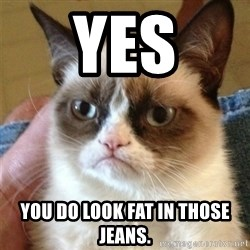 Grumpy Cat  - Yes you do look fat in those jeans.