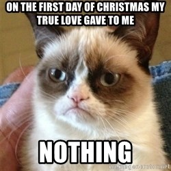 Grumpy Cat  - On the first day of christmas my true love gave to me nothing