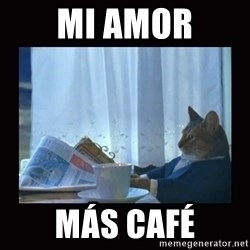 i should buy a boat cat - mi amor más café