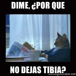 i should buy a boat cat - dime, ¿Por que no dejas tibia?