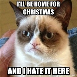 Grumpy Cat  - i'll be home for christmas and i hate it here