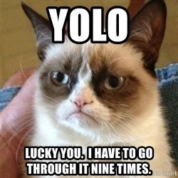 Grumpy Cat  - YOLO lucky you.  I have to go through it nine times.
