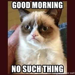 Tard the Grumpy Cat - Good moRnIng  No such thing