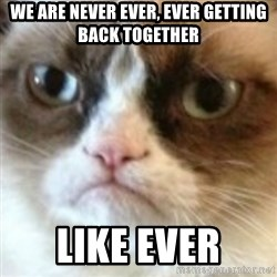 angry cat asshole - We Are Never Ever, Ever Getting Back Together Like Ever